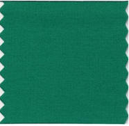 Pantone announced the 2013 Color of the Year as 17-5641 Emerald!